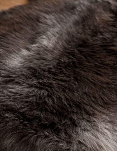Heidschnucke-graubraundk
