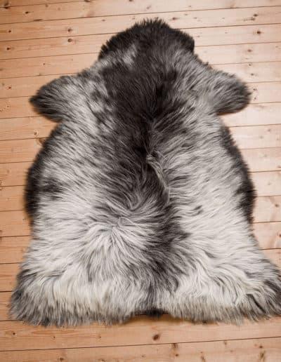 Heidschnucke-schwarzbraun