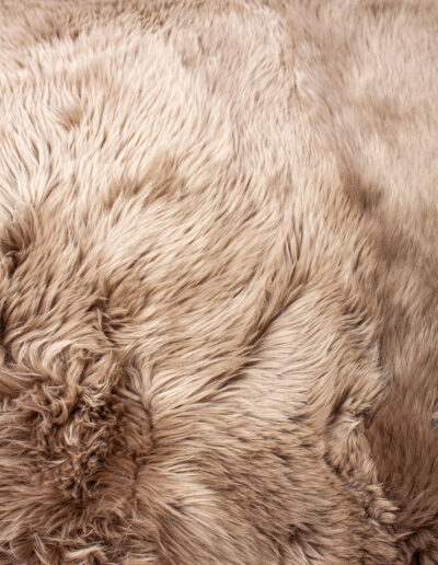 Taupe-0528
