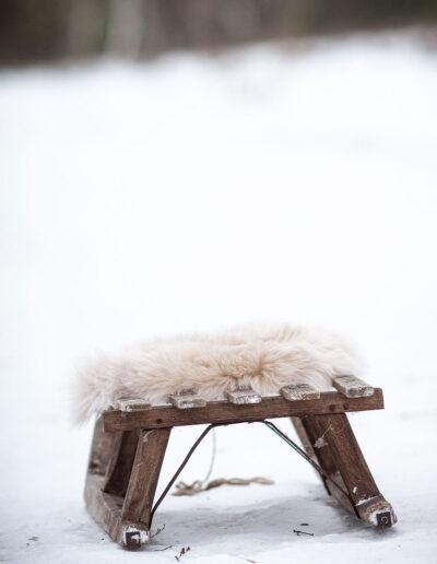 FHVF_Winter_Heide-5422